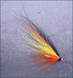 Blackback Tube Fly