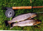 Brown trout fishing - a nice brace from the loch.