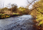River Carron - Salmon, trout and sea trout fishing at Headswood.