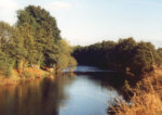 River Earn, Templemill - Salmon, sea trout, brown trout and grayling fishing