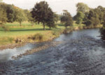 River Earn - Crieff Angling Club - Salmon, sea trout, brown trout, grayling fishing on Drummond Castle water.