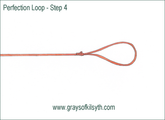 Fishing knots perfection loop for How to tie a knot in fishing line