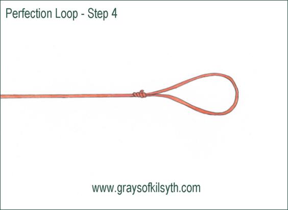 Fishing Knots Perfection Loop
