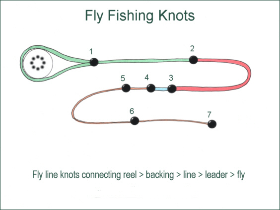 Fly fishing knots for Fishing line leader