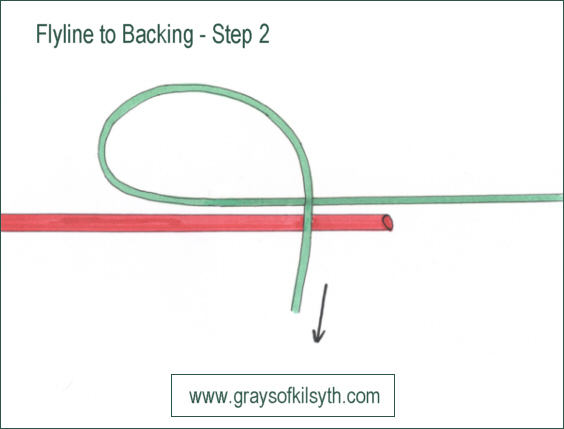 attaching fly line to backing line - step 2
