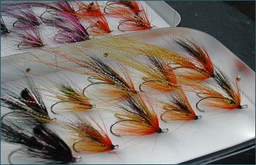 Ally's Shrimp and Cascade Salmon Flies