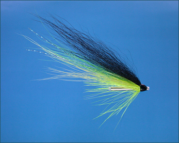 Blackback Salmon Fly Selection