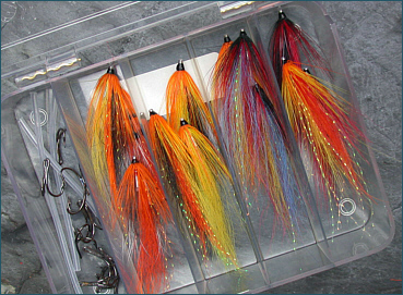 Scottish Shrimp Salmon Fly Selection