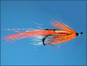 Ally's Shrimp salmon fly