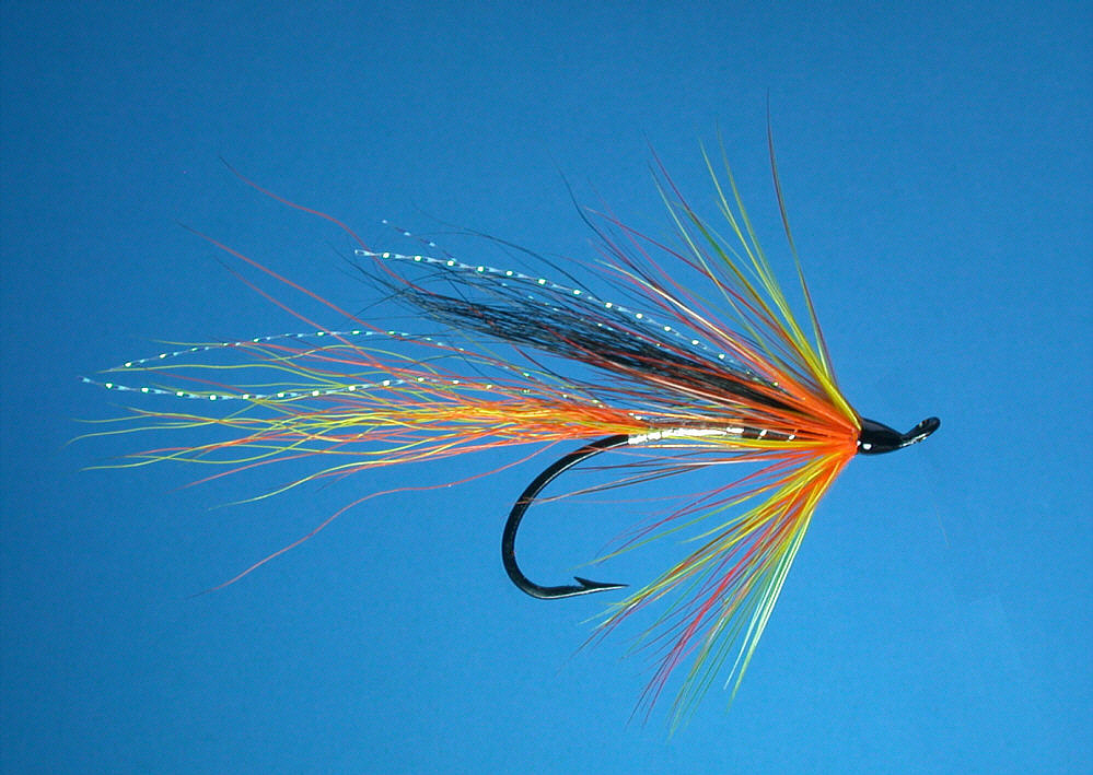 Salmon fly tying for Salon fly