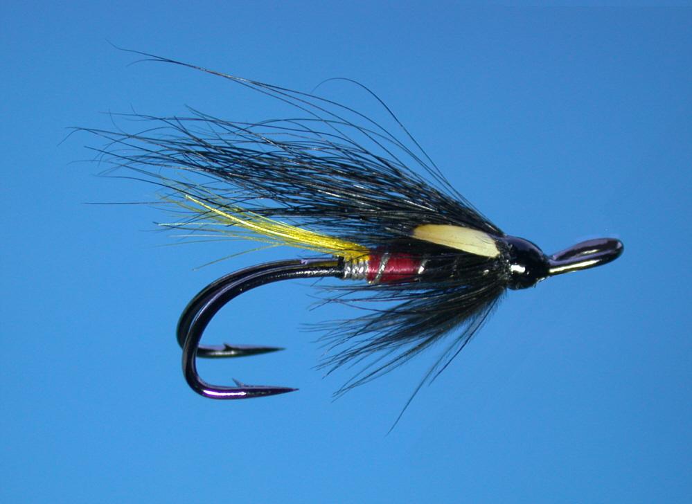 Modern salmon flies for Salon fly