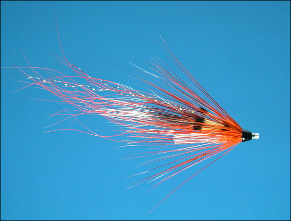 Ally's Shrimp Salmon Tube Fly