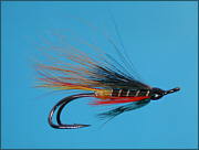 A Thunder and Lightning salmon fly double