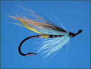 A Blue Charm salmon fly