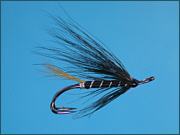 A Stoat's Tail salmon fly