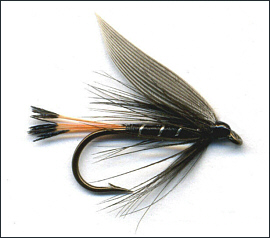 Trout fly tying for Fly fishing for dummies