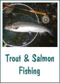 Trout and Salmon Fishing