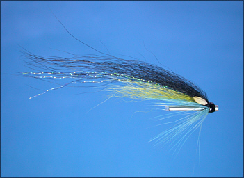 Dee Wee Monkey salmon tube fly
