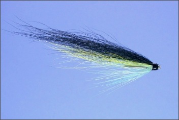 Wee Dee Monkey Salmon Tube Fly
